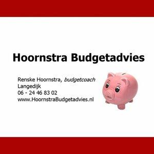 Hoornstra Budgetadvies image 2
