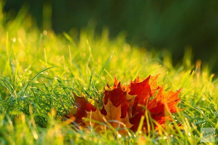 Herfst begint rustig, later in de week weersverandering