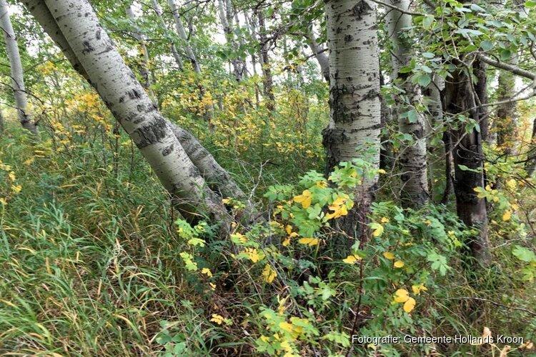 Kinderen en buurtbewoners planten Tiny Forest 'Het Wilde Boomgaardje' in Nieuwe Niedorp