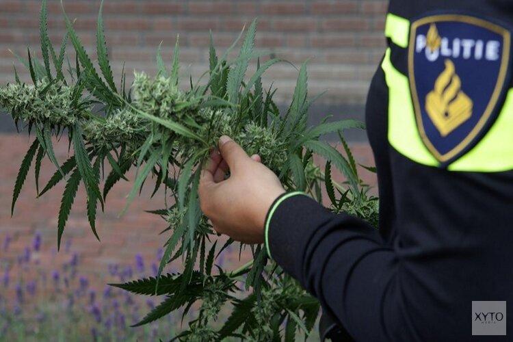 Burgemeester sluit drugspand in Hippolytushoef