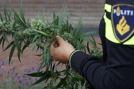 Burgemeester sluit drugspand